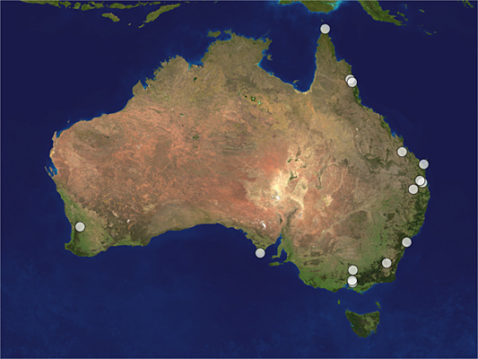 Distribution map of Megalyra wagneri