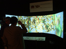 Atta texana colony on immersive system