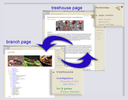 publish your treehouse on the ToL
